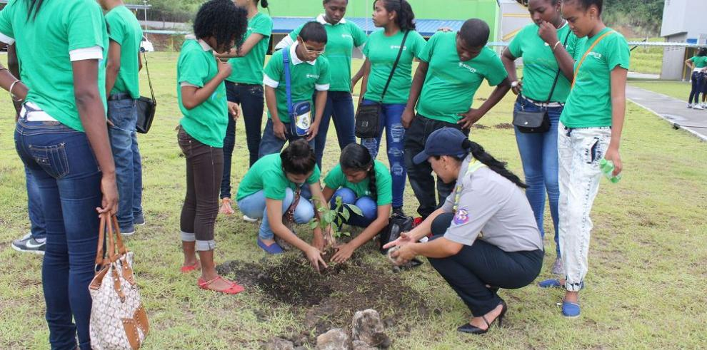Jóvenes Scouts y niños colonenses siembran árboles