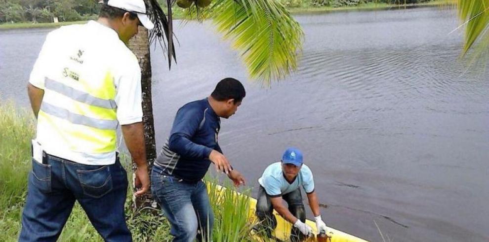 Se normaliza servicio de agua potable en Isla Colón