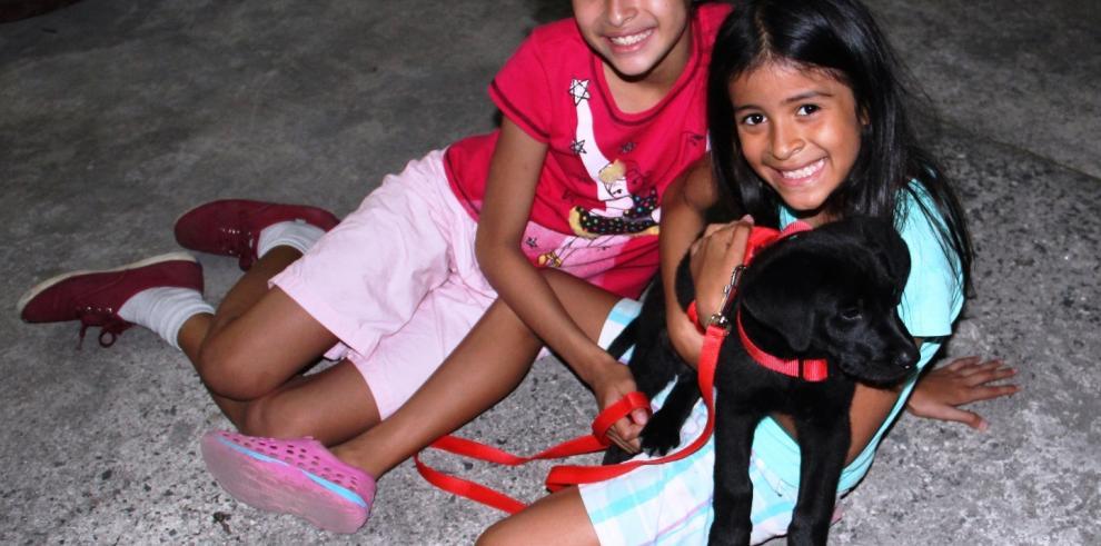 Niña se enfrenta a tres perros para salvar a su mascota