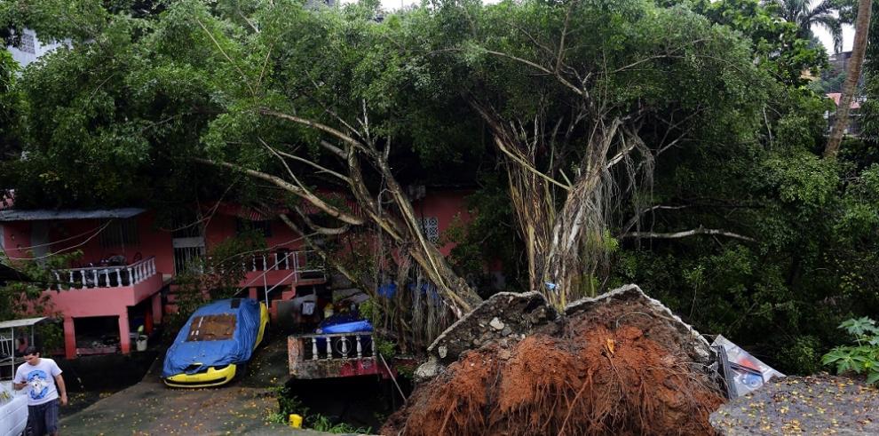Ladera de Samaria podría ser convertida en Parque Ecológico