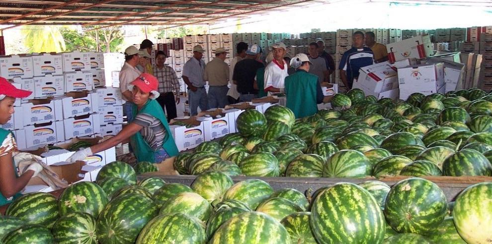 Entregarán $1 millón a empresas agrícolas