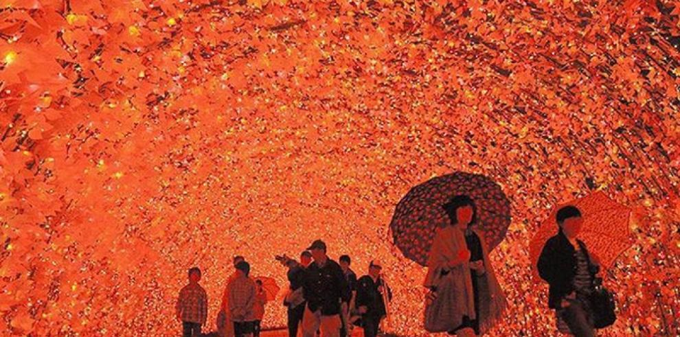 Increíble túnel de luces en Japón