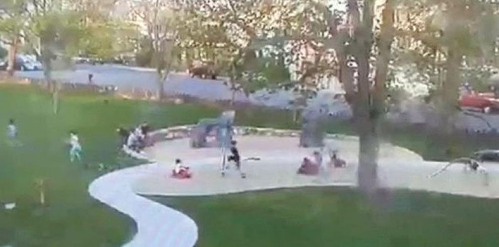 Árbol cae sobre niños mientras jugaban en el parque