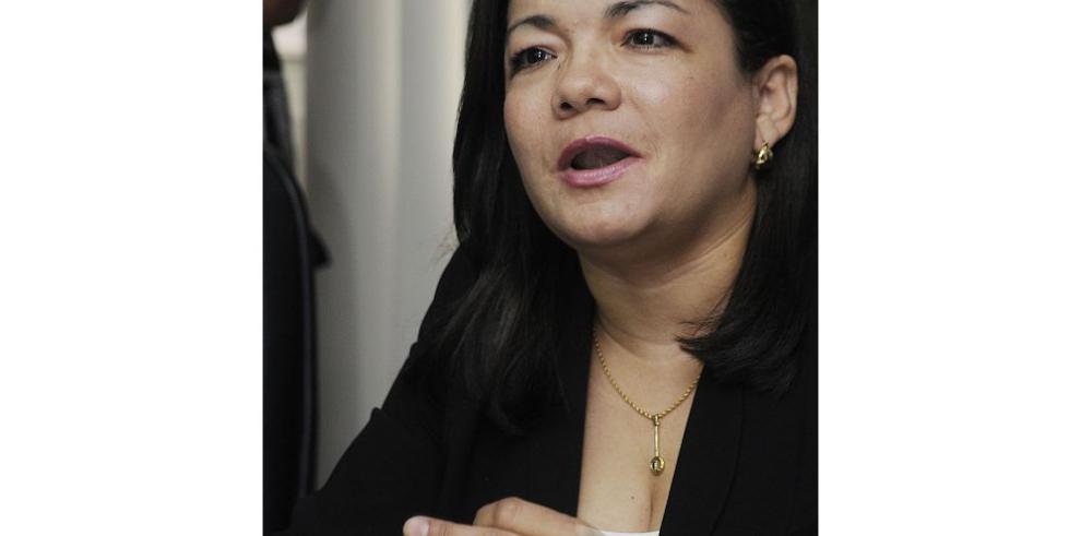 "Sociedad civil pide vetar ""ley antiblindaje"""