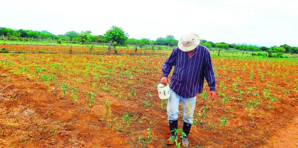 Buscan alternativas para enfrentar la sequía