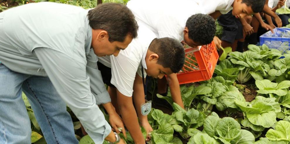 Prácticas sostenibles en las escuelas