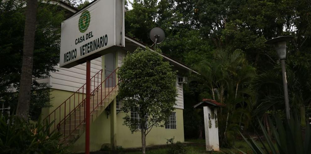 Veterinarios piden especialistas para atender zoonosis