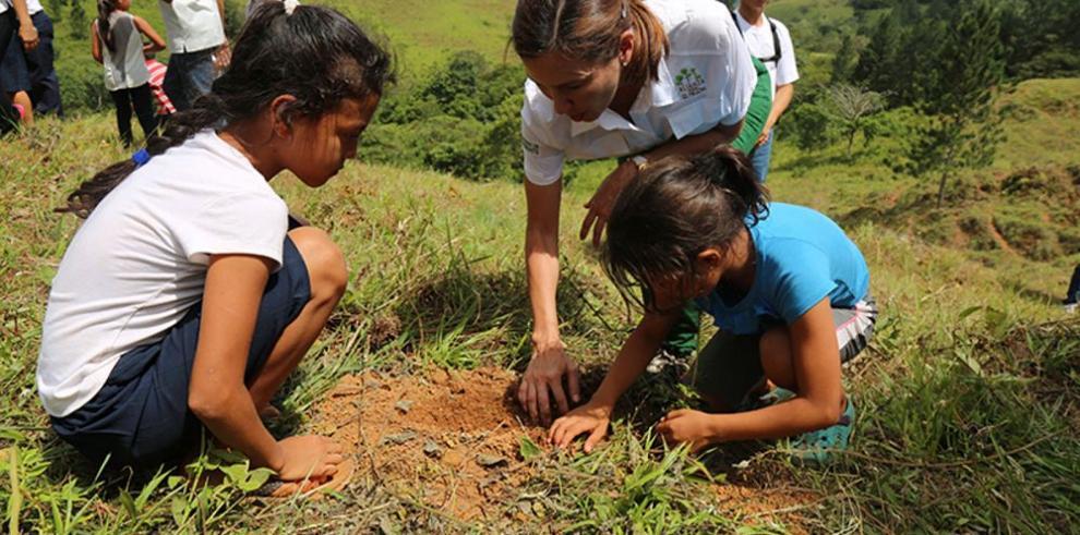 Panamá reforesta más de lo proyectado