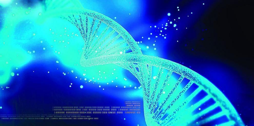 Marcador de ADN para pacientes con hepatitis B crónica