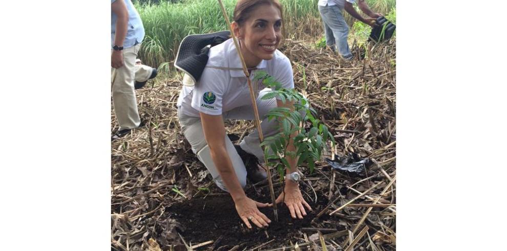 El Desarrollo sostenible de Darién, la puesta de ANCON