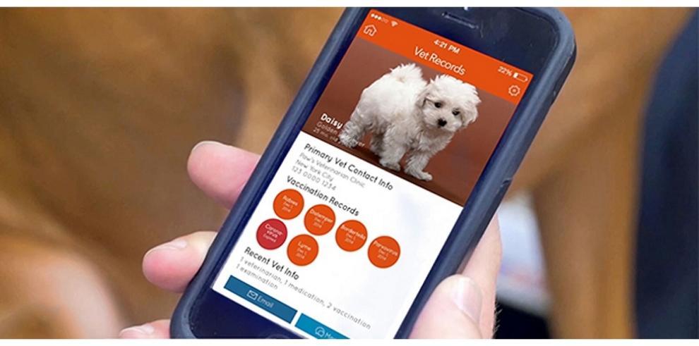 Conectado con su perro a través de GPS, Wi-Fi y Bluetooh