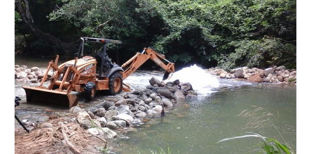 Hacen llamado a reforestar cuenca del Zaratí