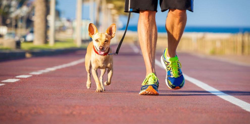 Corredores y perros, historia ligada entre el amor y el odio