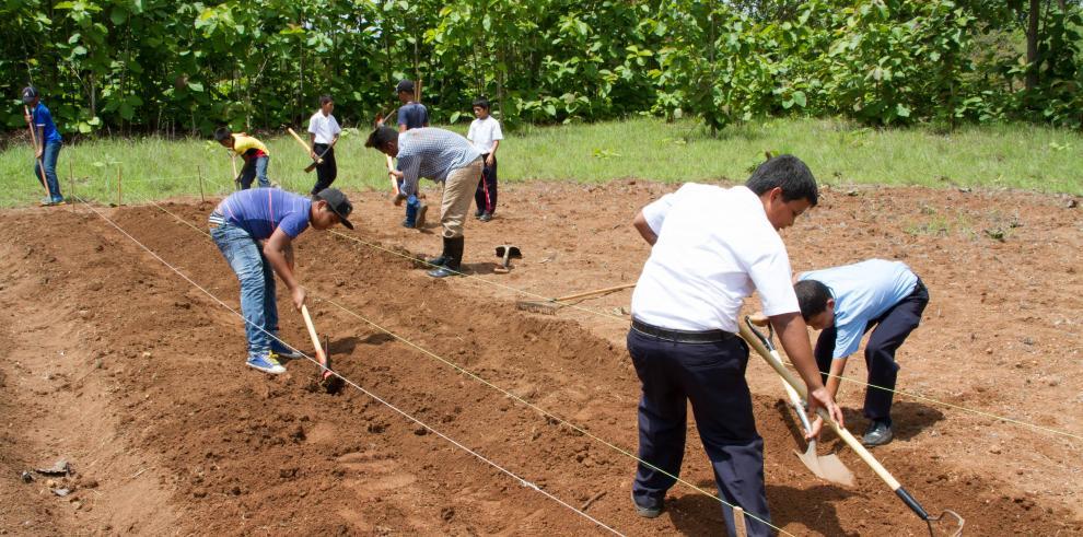Estudiantes coclesanos crean huertos escolares