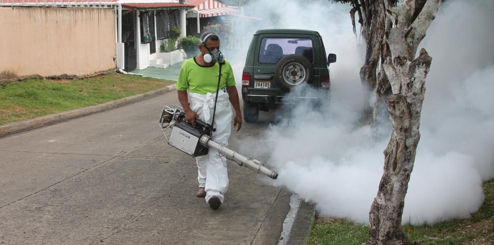 AAUD realiza operativos de limpieza en Pedregal