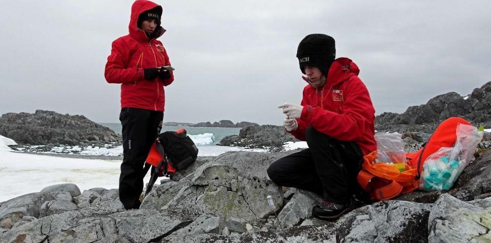 La Antártida pierde 60 km cúbicos de hielo al año