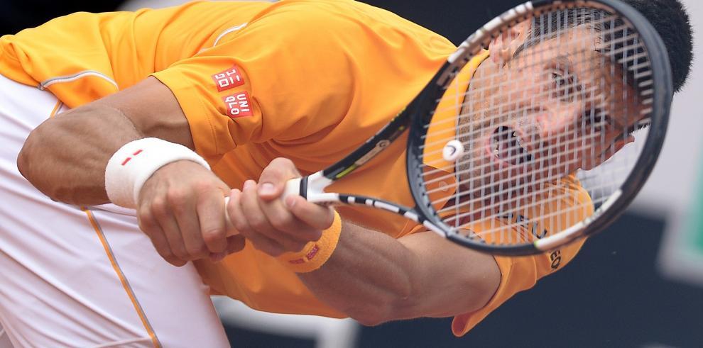 Djokovic vence a Ferrer y se clasifica a la final de Roma