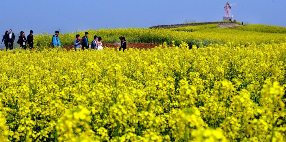 Empieza la primavera en China