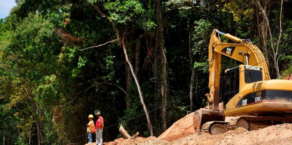 Un 59% de la superficie del país es todavía zona boscosa