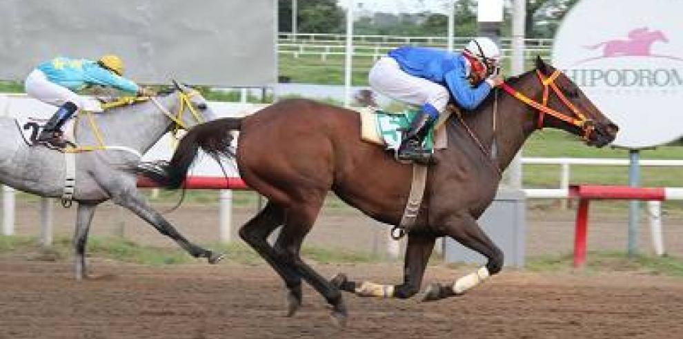Granados equinos chocan en el Clásico Laffit Pincay Jr.