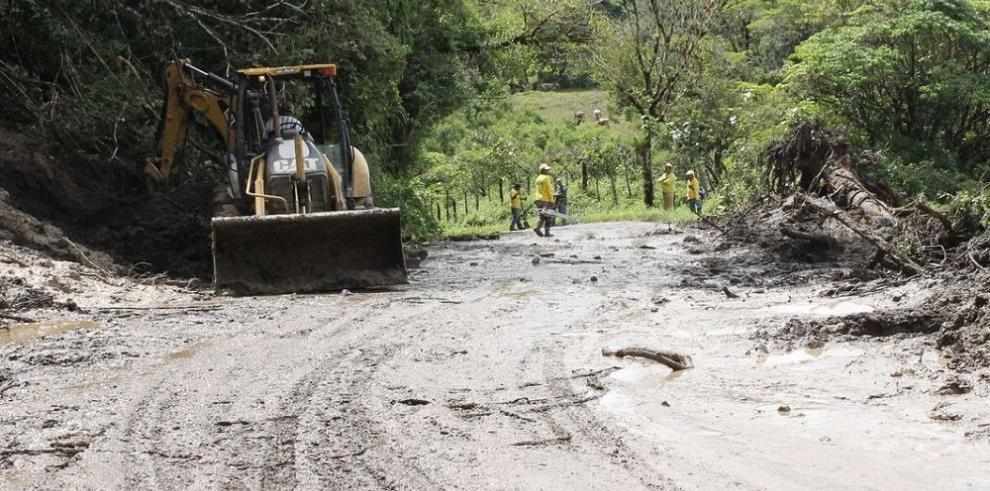 Caída de árboles y desprendimiento de techos en el país