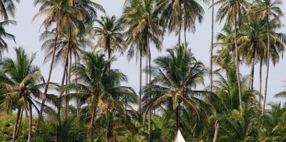 Panamá, azotado por el cambio climático