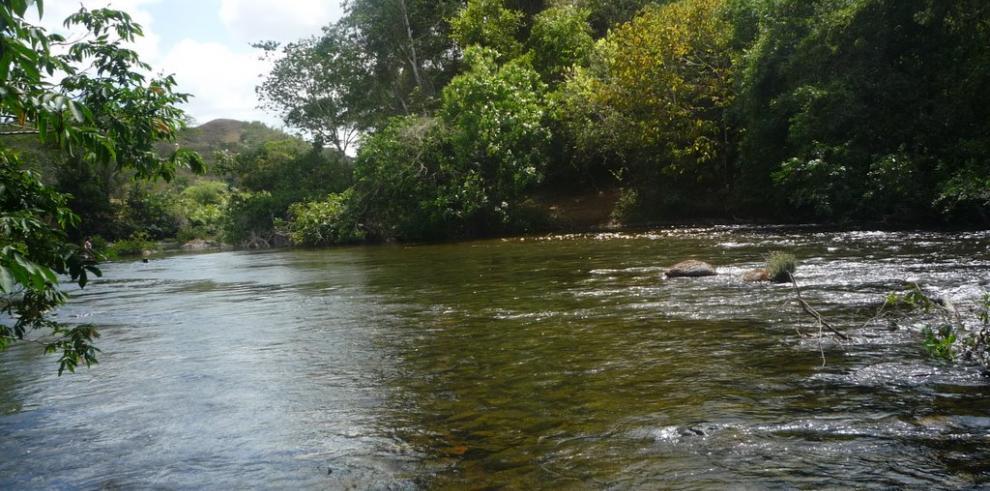 MINSA anunció que realiza monitoreo semanal en río La Villa