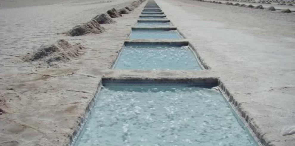 Minera surcoreana invertirá 230 millones dólares para extraer litio argentino