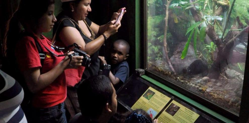 Actividades del hombre, un peligro para los anfibios