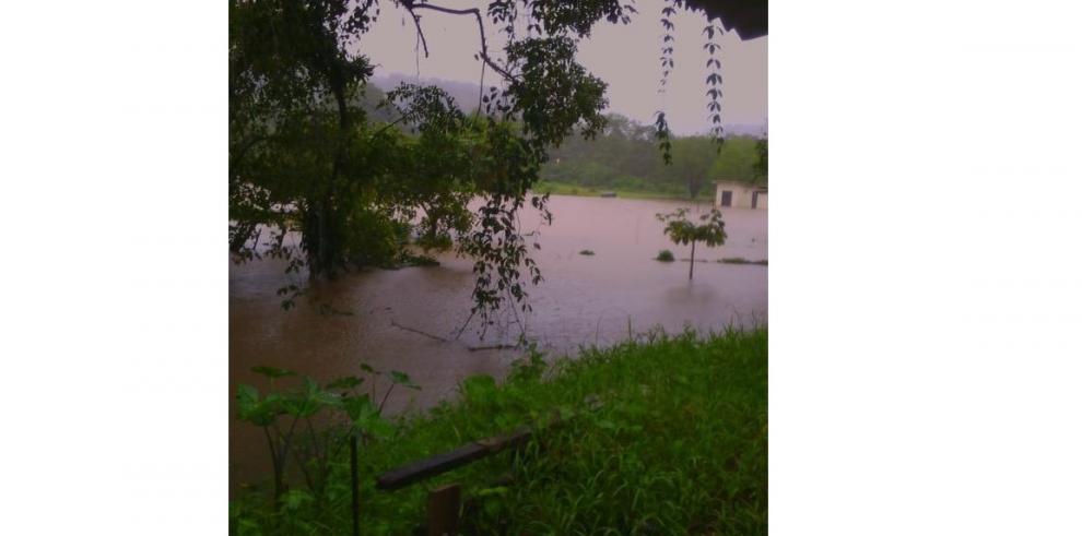 Reportan inundaciones en Colón. Hay cuatro casas afectadas