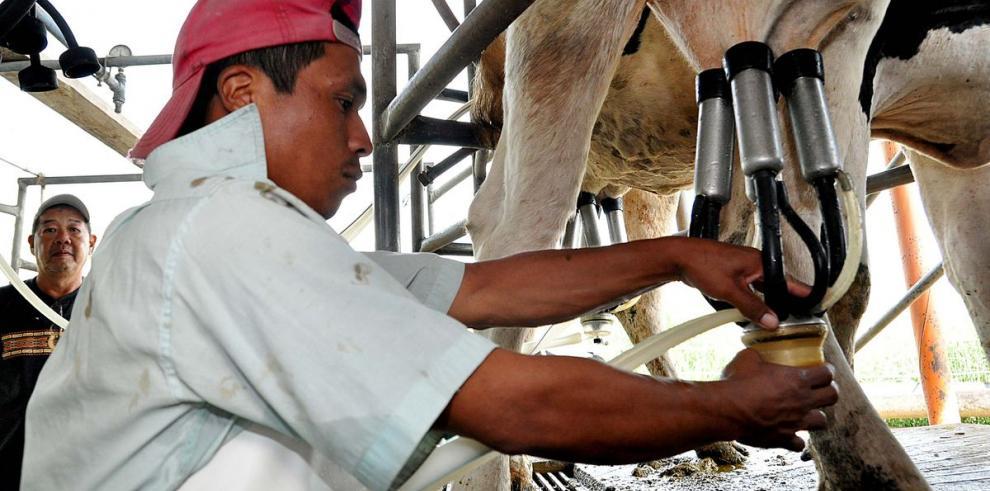 Crece la producción de lácteos a febrero