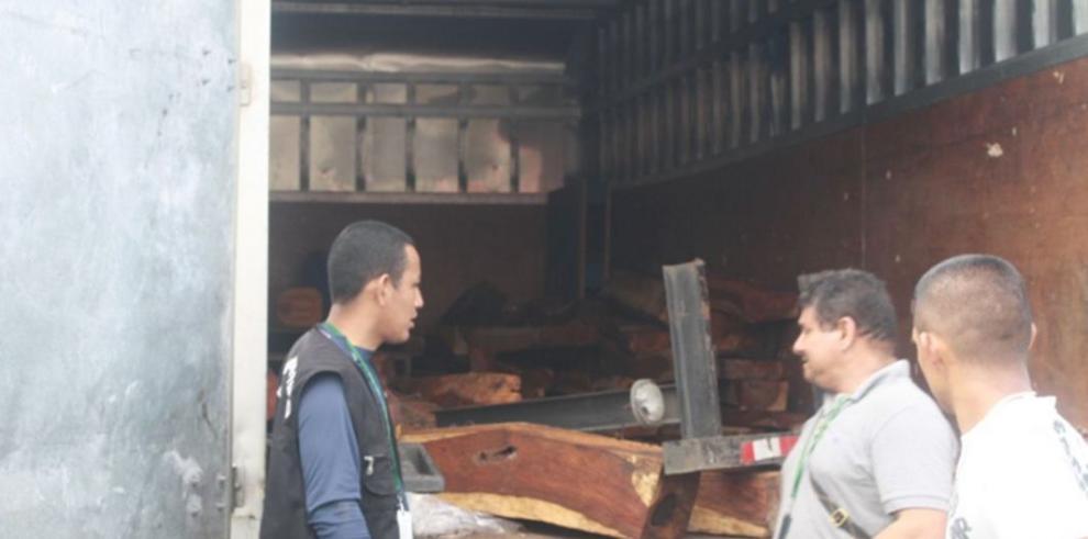 Decomisan madera de cocobolo en Arraiján