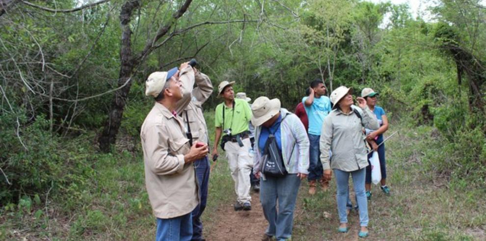 Ambientalistas reciben capacitación de ANAM