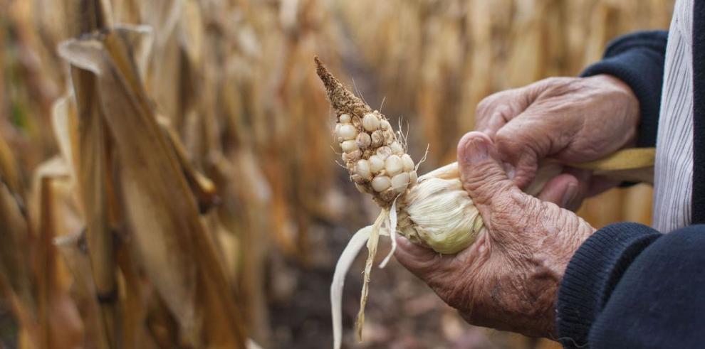 Oxfam urge prepararse ante la sequía
