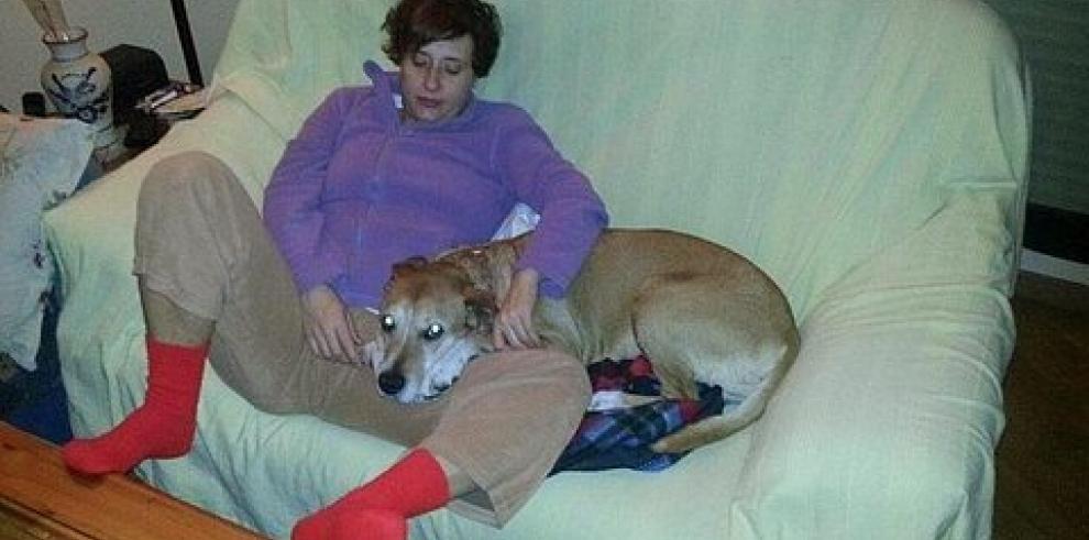 Sacrifican a perro de la enfermera contagiada con ébola