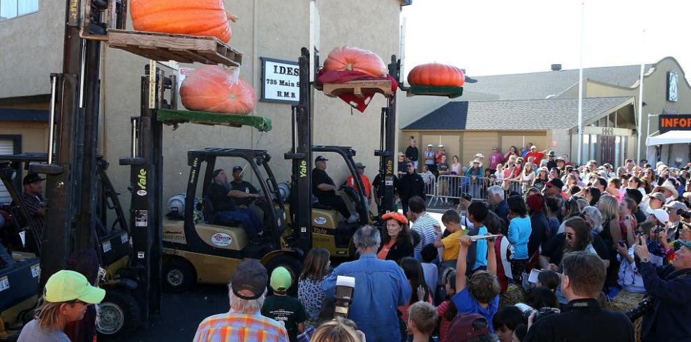 Concurso anual de calabazas en el norte de California
