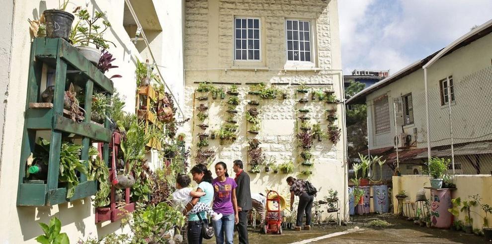Los jardines que se exhibieron en Brasil