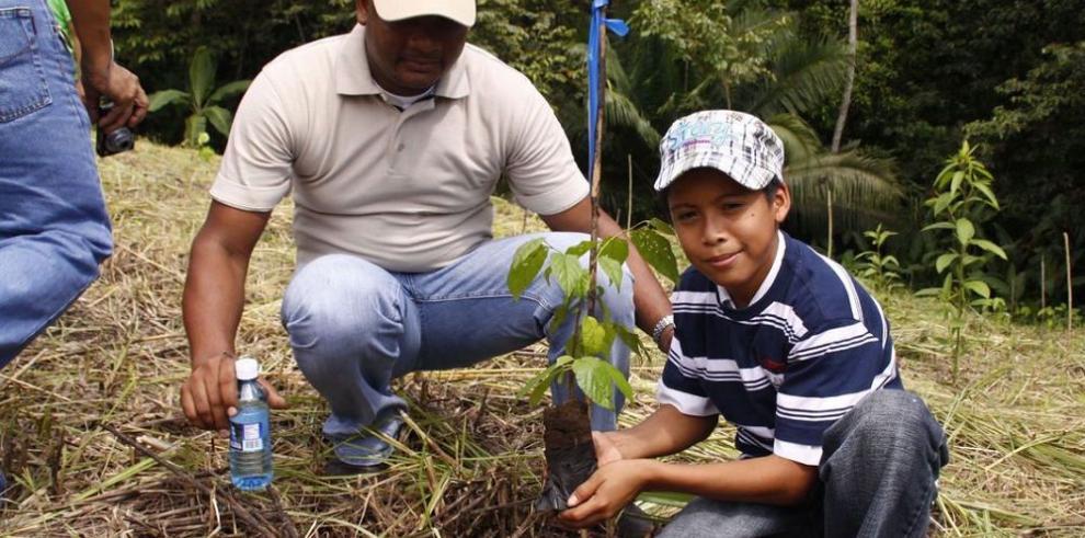 Panamá avanza estrategias contra el cambio climático