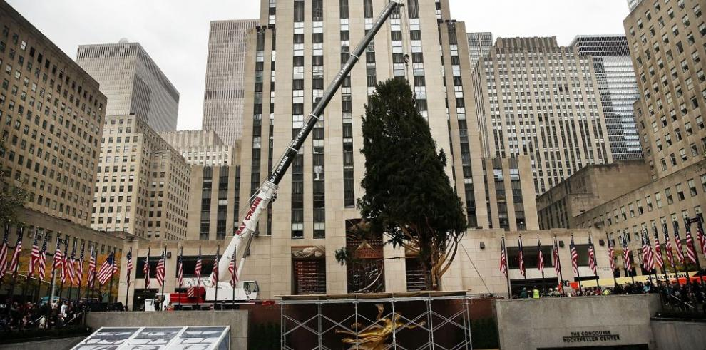 Instalan el árbol de navidad delRockefeller Center's en Nueva York