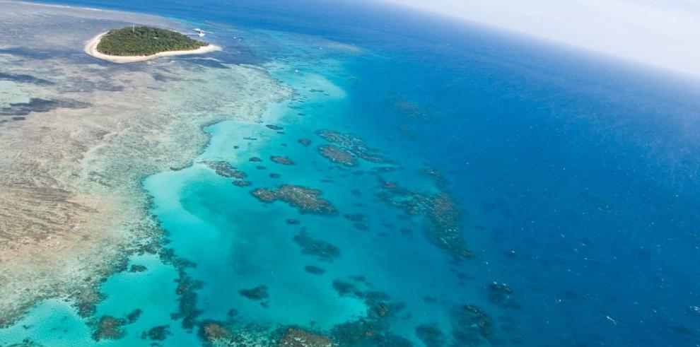 Gran Barrera de Coral, en su peor estado de conservación