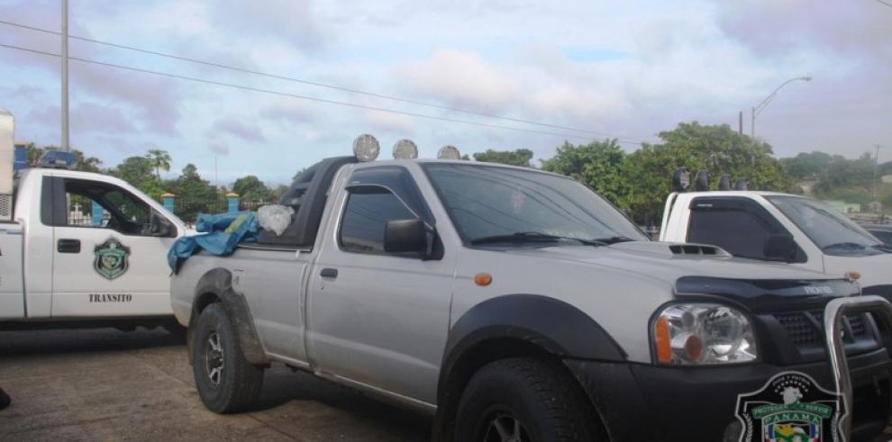 Policía Nacional trabaja para proteger la madera del Cocobolo