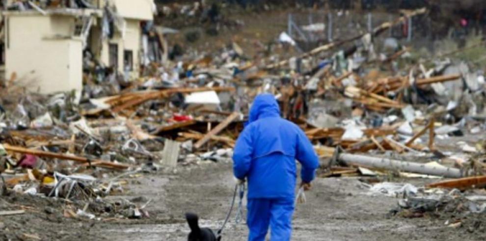 Feria para adoptar mascotas en Fukushima