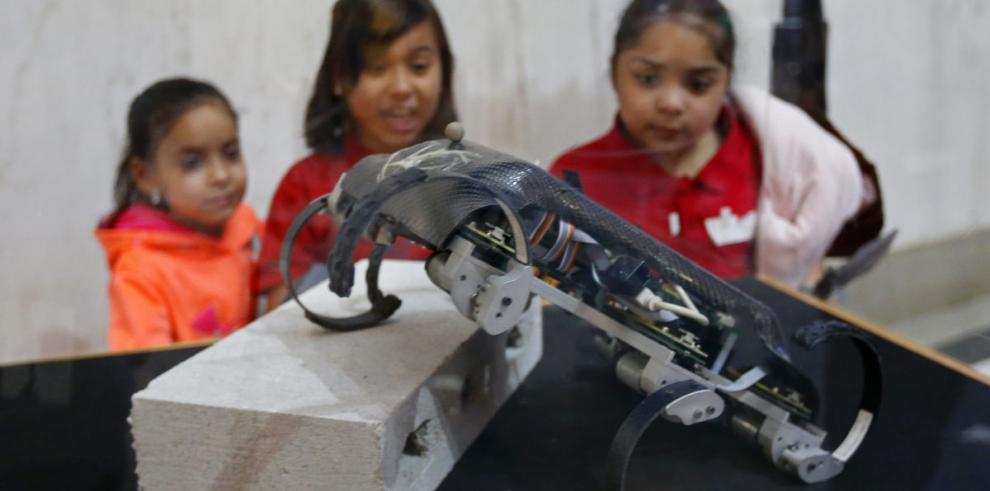 Exposición sobre el auge de la robótica