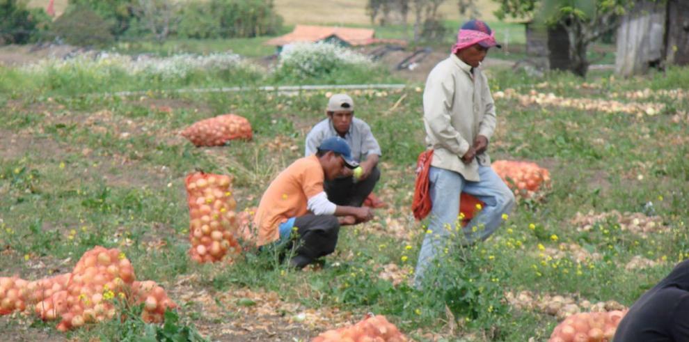 Pérdidas en el agro suman $350 mil