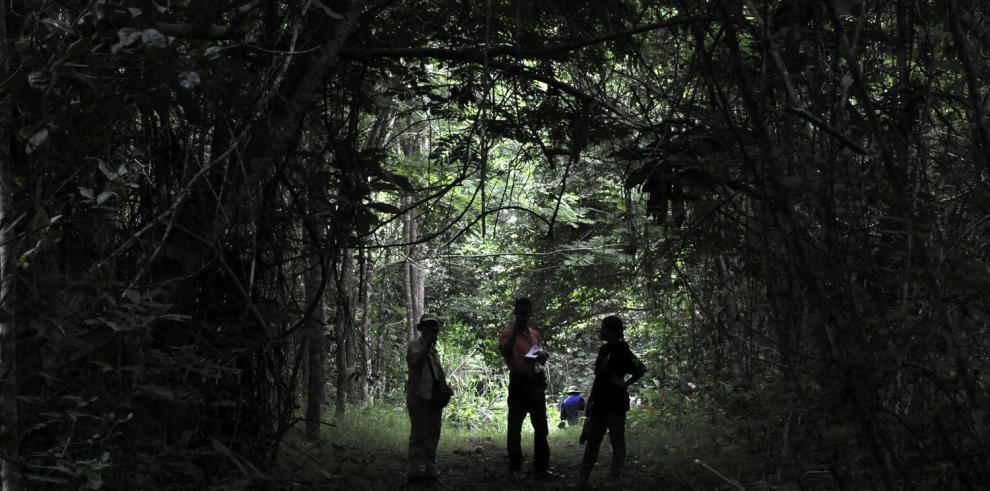 Los mitos que han 'taponado' a la provincia de Darién