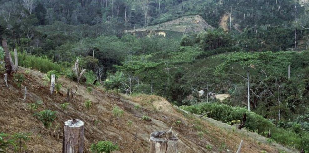 Acuerdan retos medioambientales
