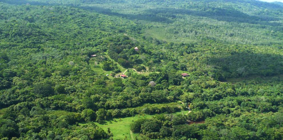 El ambientalismo panameño en el siglo XXI: trayectoria y desafíos