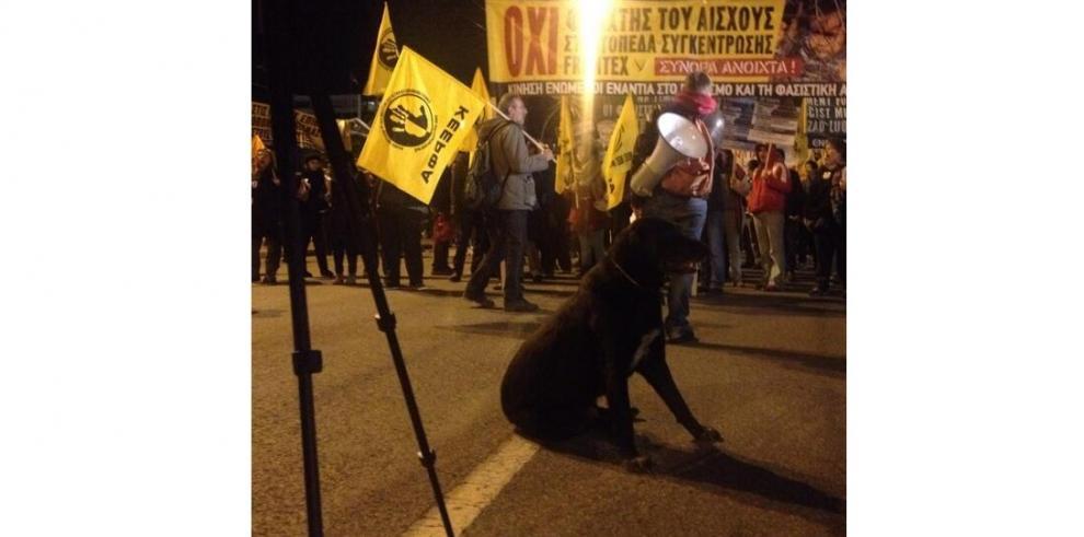Despiden a Lukánikos, el can símbolo de las protestas en Grecia