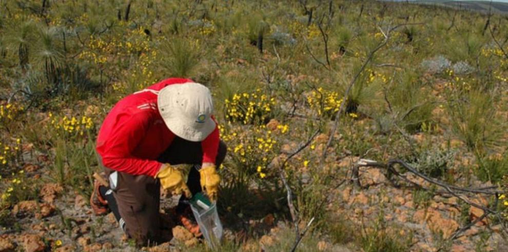 STRI descubre secretos de la biodiversidad