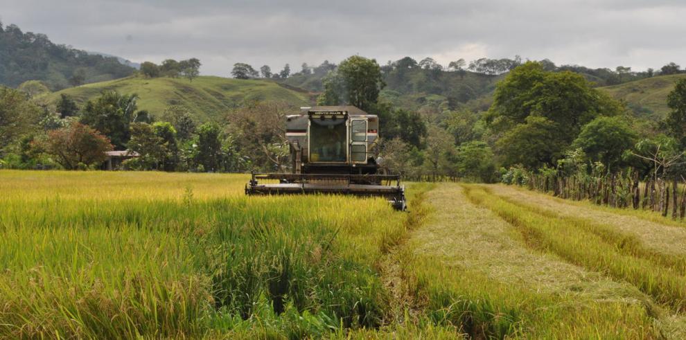 Banconal consolida apoyo al sector agro